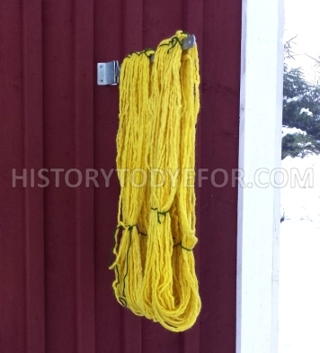 Tansy dyed yarn photographed outdoors
